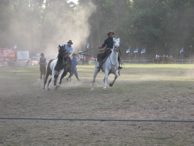 Gauchos in Uruguay bei der Arbeit