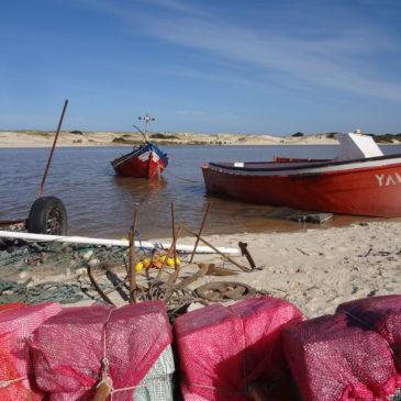 Personalisierte Touren und Reisen durch Uruguay
