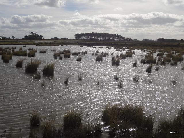 Lagunen Rocha Uruguay
