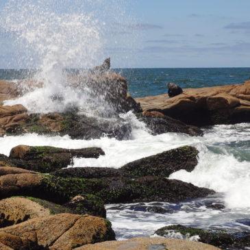 Singlereisen in Uruguay – das Land am Rio de la Plata allein entdecken