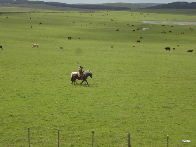 Gauchos in Uruguay Landesinnere