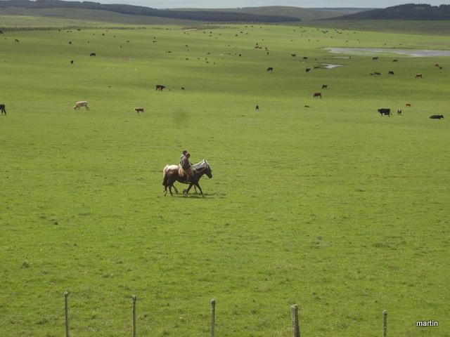 Heimat Uruguay - Gauchos in der Pampa