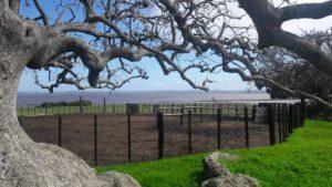 Aussteiger Urlaub Uruguay