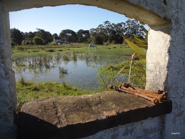 Lebenshaltungskosten Uruguay