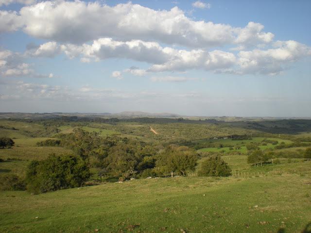39 ha U$s 4.100 Farmland Ackerland Uruguay