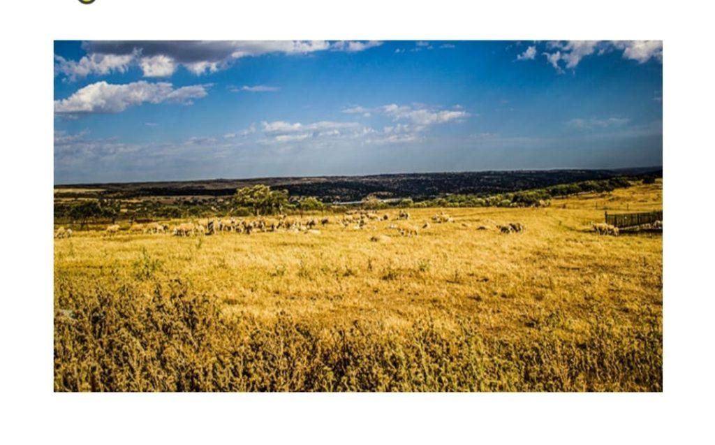 Uruguay Farmland Agrarland Aussteiger zu verkaufen