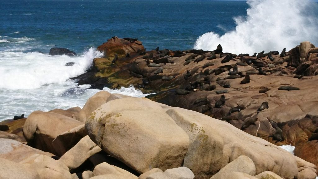 Uruguay Exkursion Landesinnere und Nationalpark