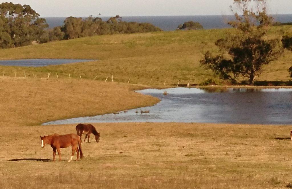 Uruguay Individualurlaub