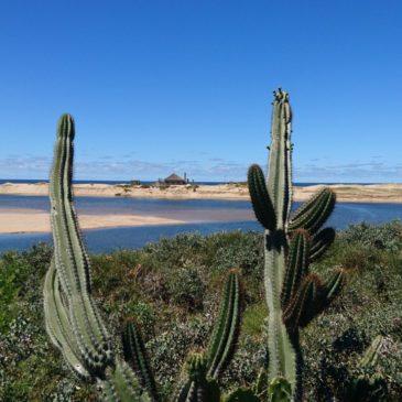 Uruguay Rundreise nach Mass: Reisekosten und Reiseangebot